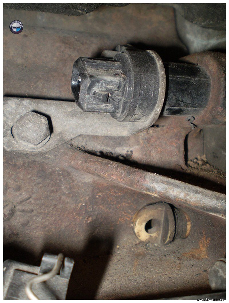 Changement Joints Pompe Injection Bosch Sur M51 - M51 ...
