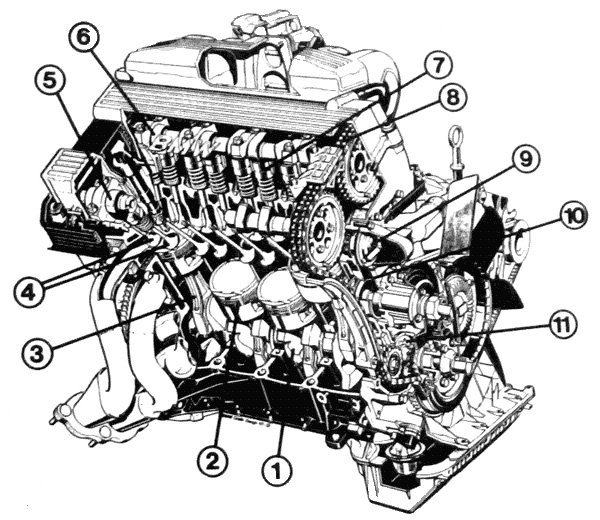 Bmw E36 Timing Belt Diagram Bmw Free Engine Image For
